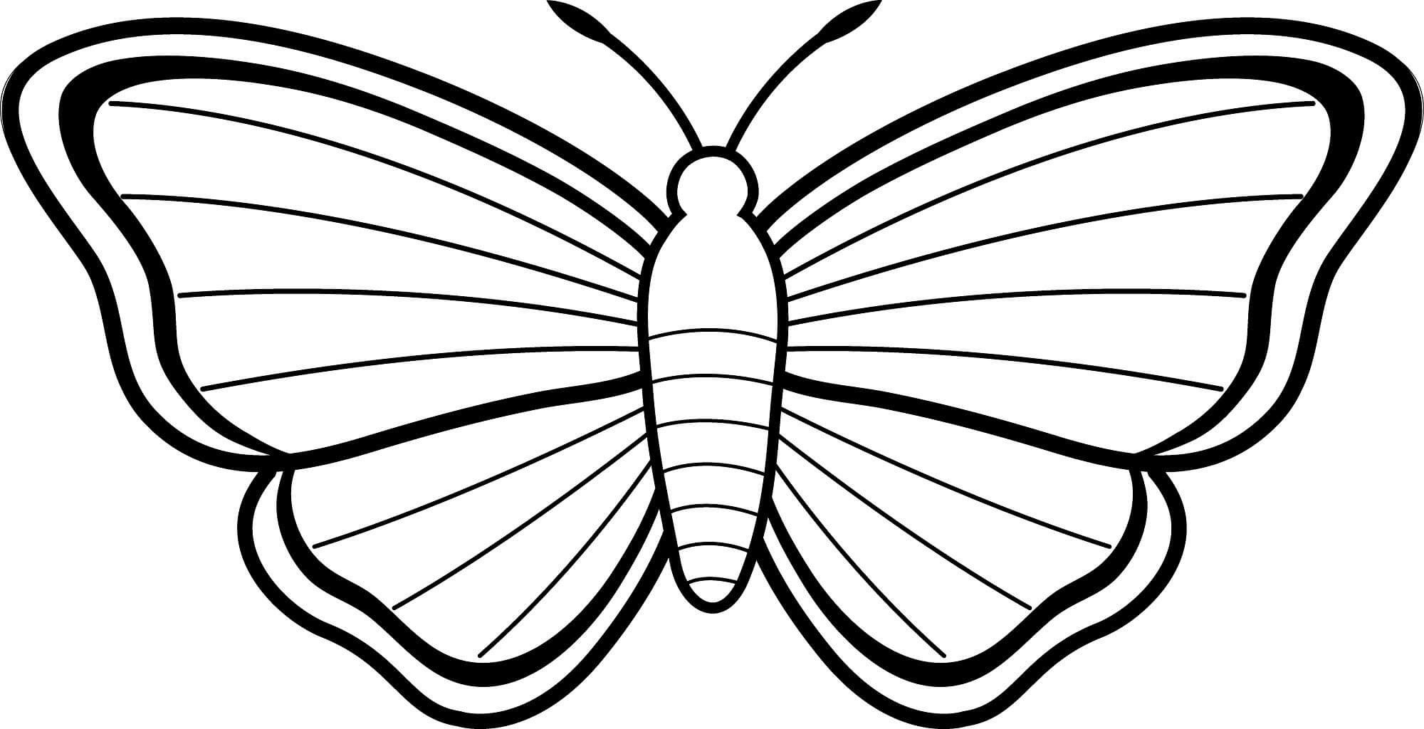 4 Worksheet Butterfly Mask Coloring Holiday Paper Coloring Pages