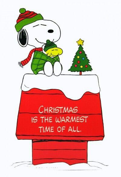 Snoopy/Christmas is the warmest time of all | xmas charlie brown ...