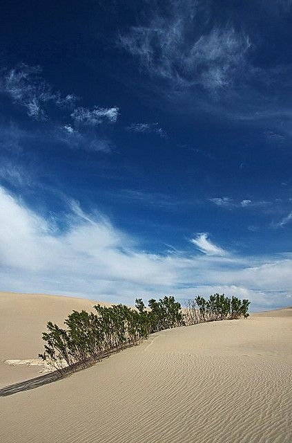 Desert Sky & Mesquite Flat Sand Dunes ~ Death Valley National Park, California