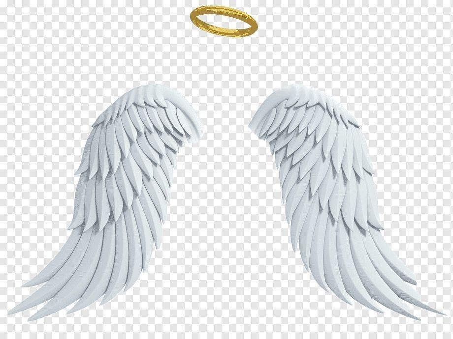 Baby Angel Wings Png Clipart Angel Wings Png Wings Png Baby Angel Wings