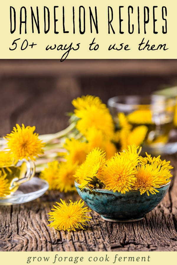 50 Dandelion Recipes Drinks Sweets Soap Remedies More In 2020