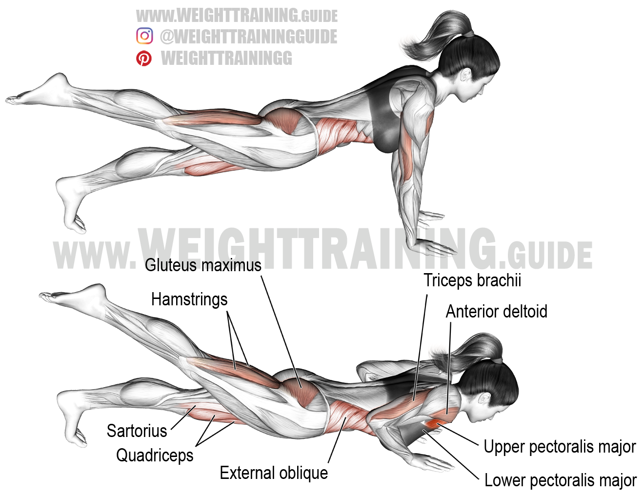 One Leg Push Up Exercise Instructions And Video