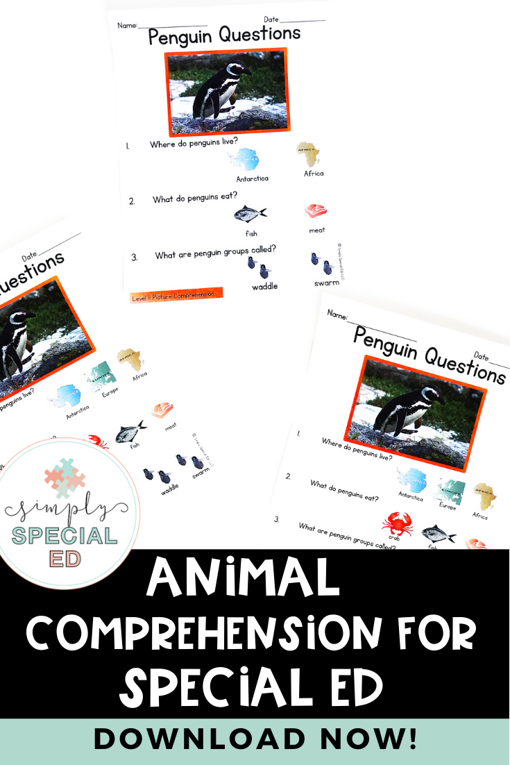 Animal Facts Leveled Comprehension For Special Education Special Education Special Education Classroom Teaching Special Education [ 1102 x 735 Pixel ]