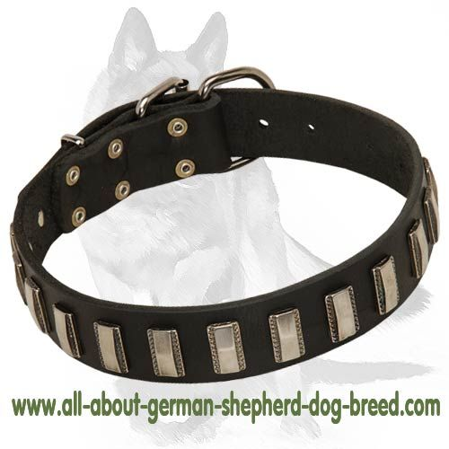 #German #Shepherd #Dog Handcrafted #Leather #Collar $49.00 | www.all-about-german-shepherd-dog-breed.com