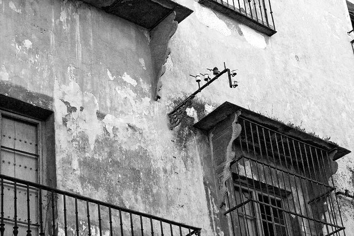 Palacio de Villapanés - Jerez de la Frontera