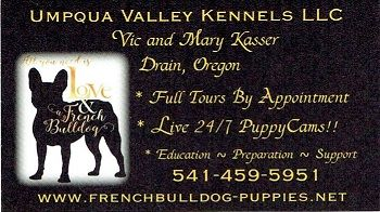 Beautiful French Bulldog Babies Just Born Umpqua Valley Kennels