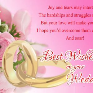 Wedding Messages Wishes Sister Congratulations