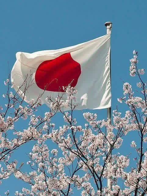 Pin By Setsuko Ueda On Japao Japan Flag Japanese Flag Japan
