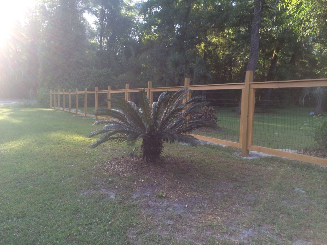 Front yard fence idea. Hog-wire / chicken wire panel fencing ...