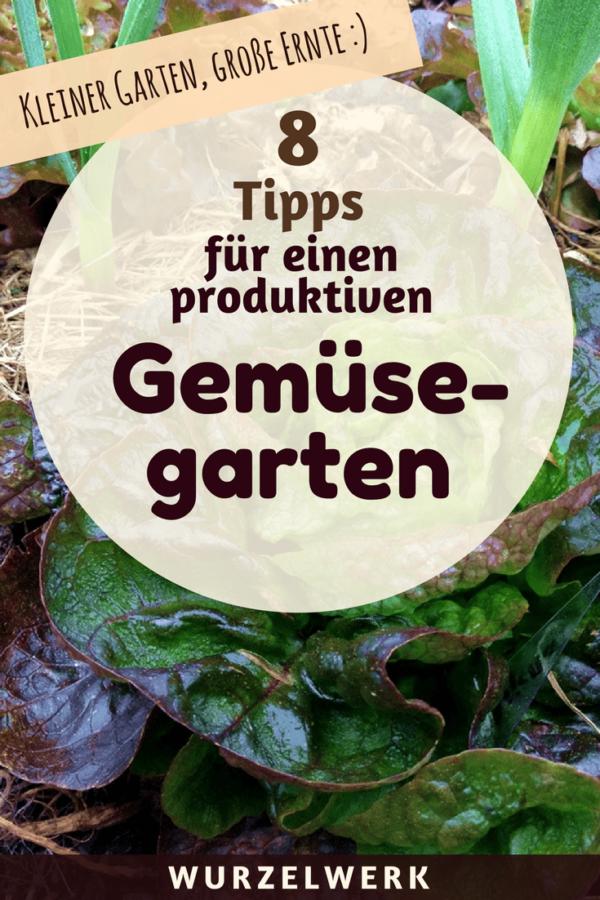Kleiner Garten Grosse Ernte 8 Tipps Fur Einen Produktiven Mini Garten Gemuseanbau In Kubeln Mini Garten Gemuse Anbauen