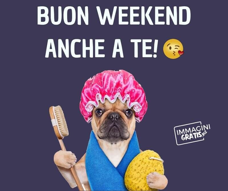Buon weekend anche a te immagini e frasi gratis di buon for Buon weekend immagini simpatiche
