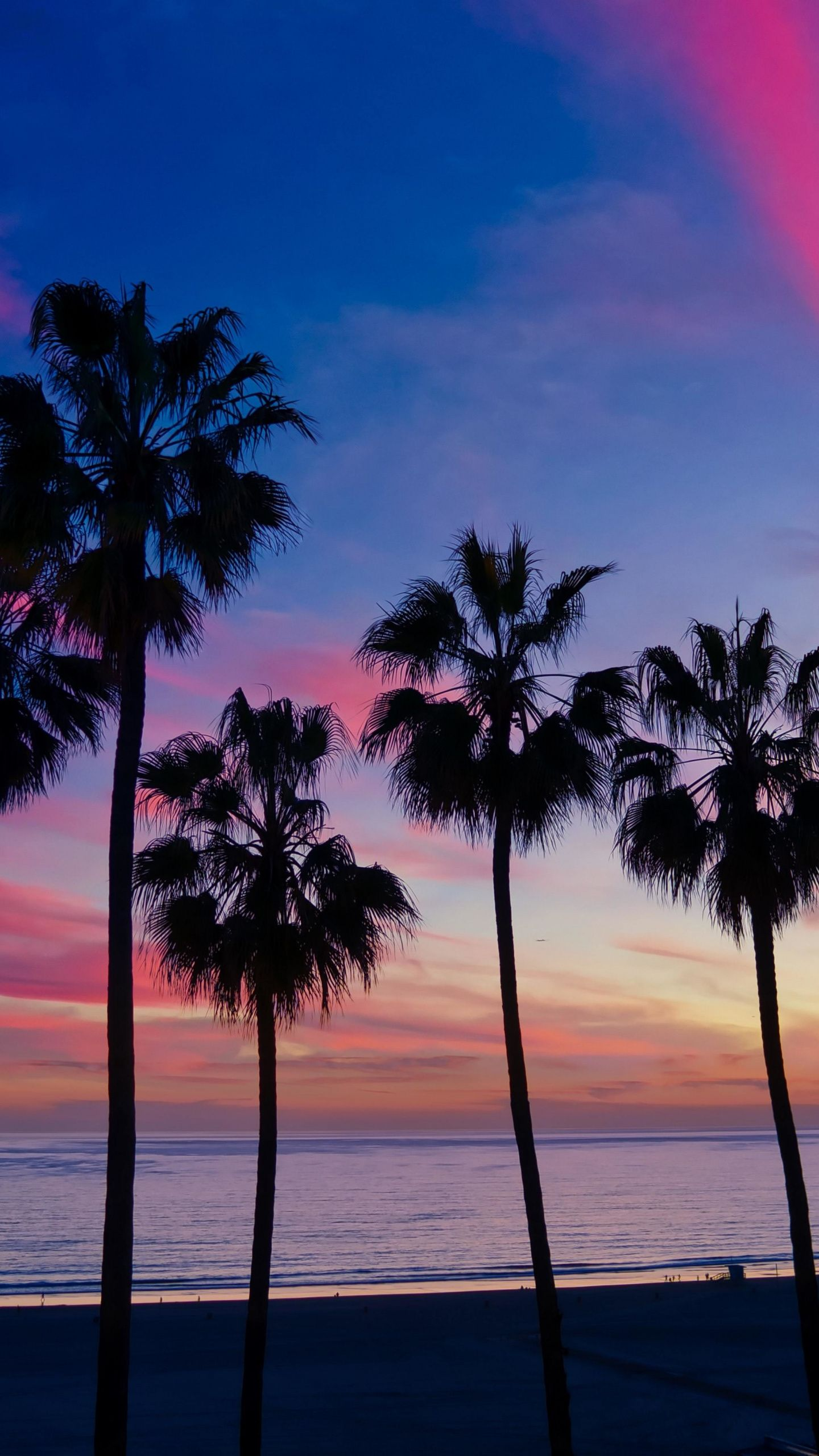 1440x2560 Palm Trees Sunset Silhouette Wallpaper Palm Trees Wallpaper Tree Wallpaper Iphone Beautiful Backgrounds