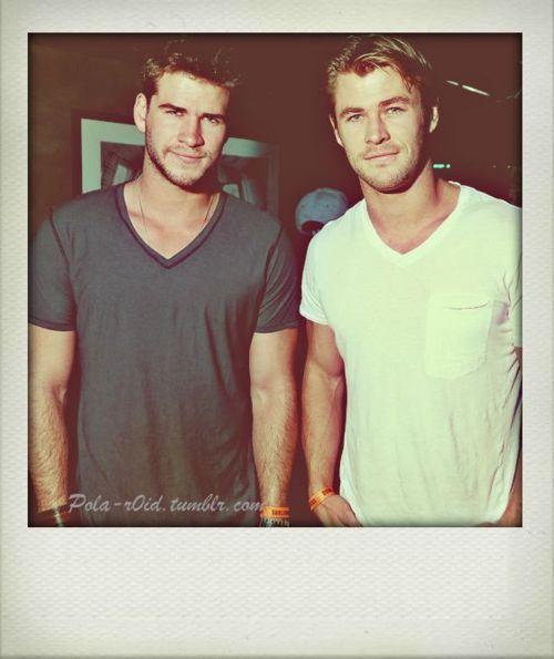 Oh hello, Hemsworth brothers.