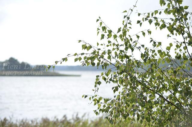 http://pienilintu.blogspot.fi/2013/08/seaside-picnic.html