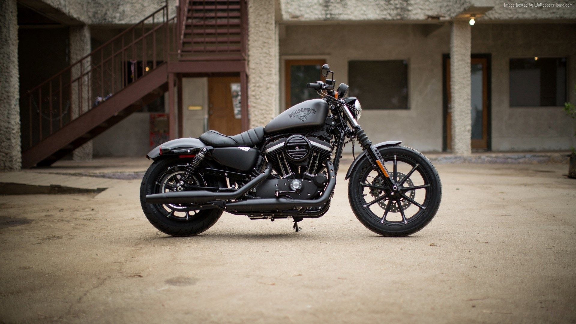 Harley Davidson Iron 883 Wallpaper