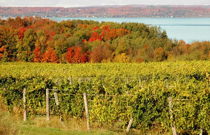 Exploring Pure Michigan The Top 10 Places You Must Visit Traverse City Wineries Traverse City Traverse City Hotels