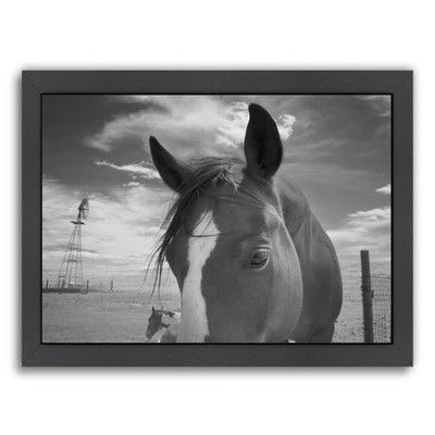 Americanflat Playful Pals #8 by Murray Bolesta Framed Photographic Print Size: