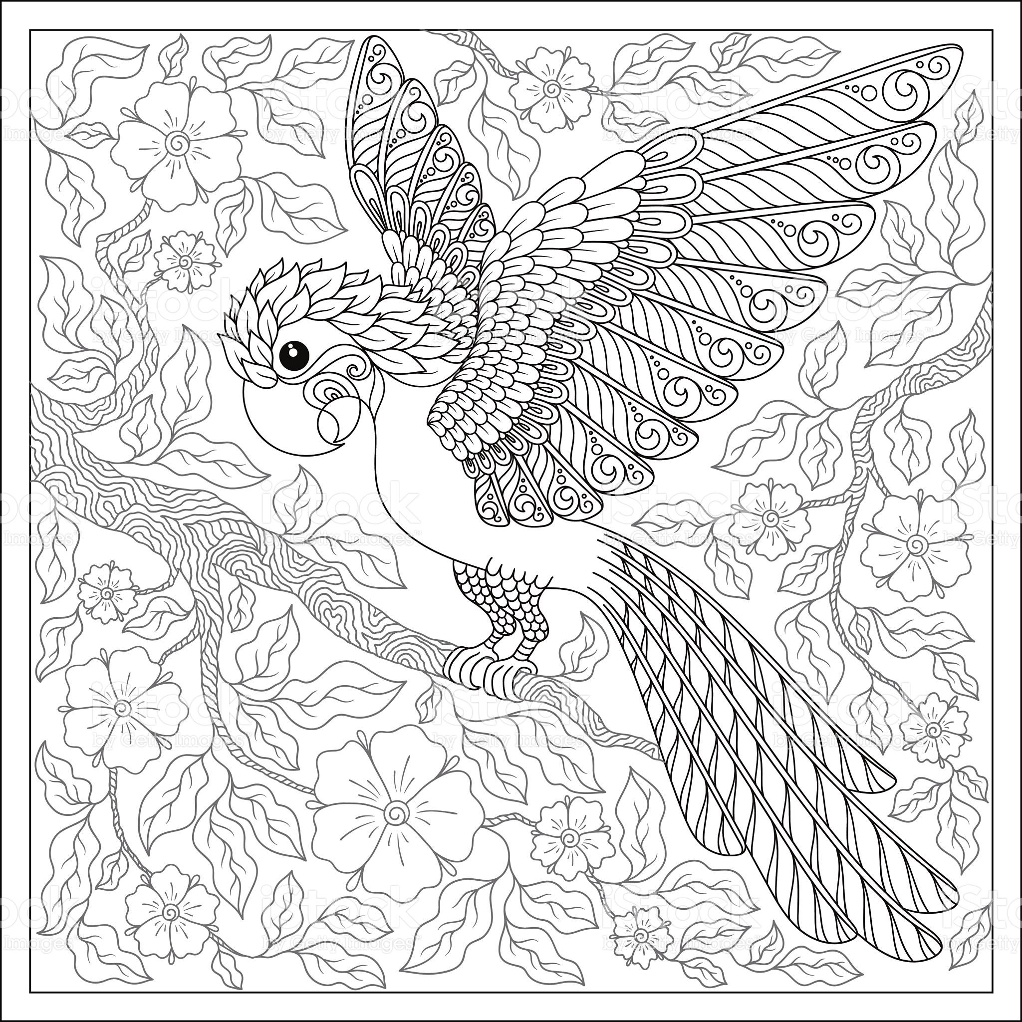 Exotic bird,fantastic flowers,branches, leaves.Contour thin line ...