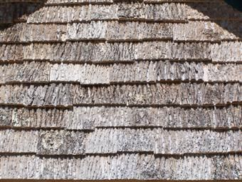 Which Bark Siding Look Is For You Parton Bark Siding Siding House Siding Siding Materials