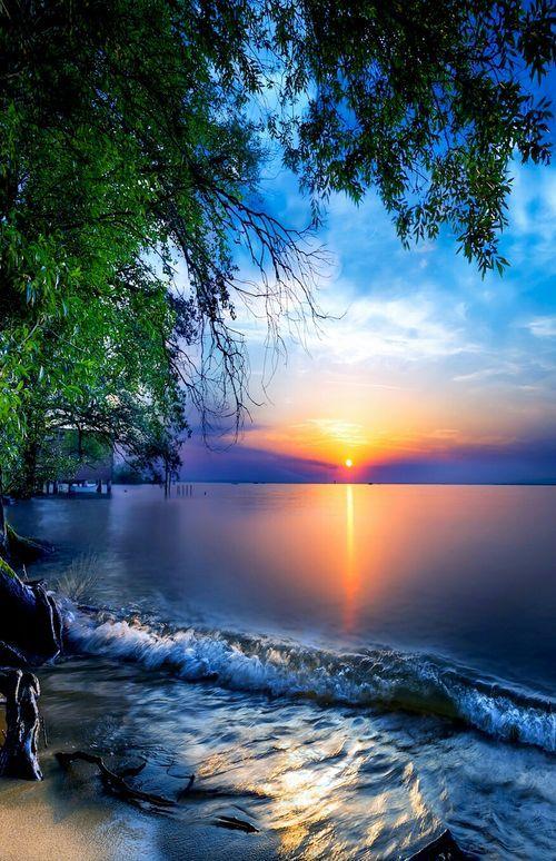 La Belle Nature Image