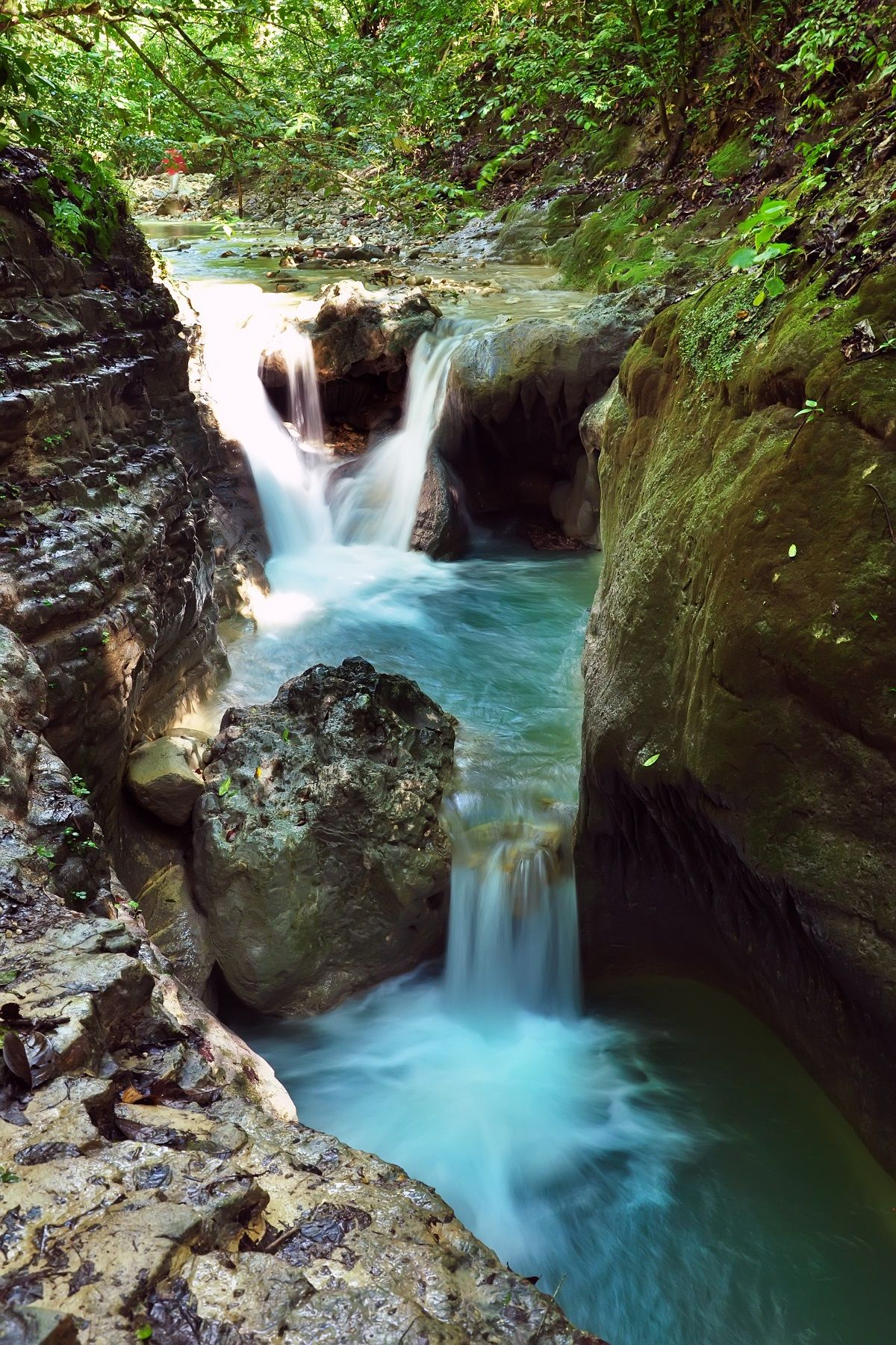 Lunavanderkruk Dominicaanse Republiek Watervallen Reizen