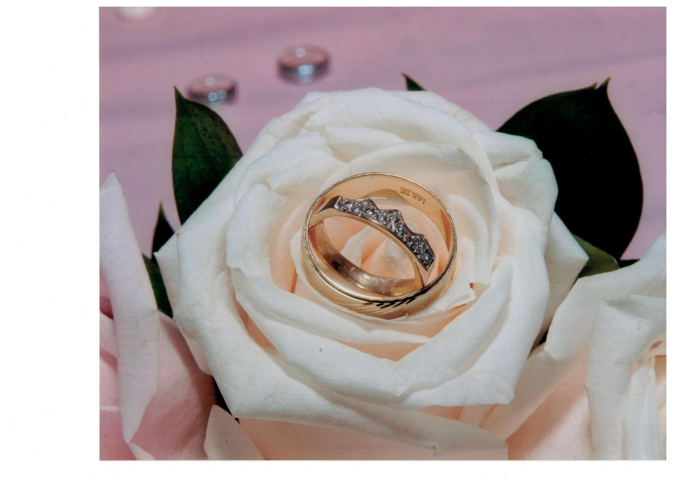Custom made wedding band to match bride's engagement ring.  Photo of couple's wedding bands taken by wedding photographer.