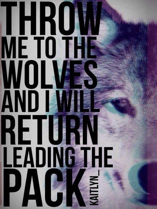De populairste tags voor deze afbeelding zijn: wolf en moon