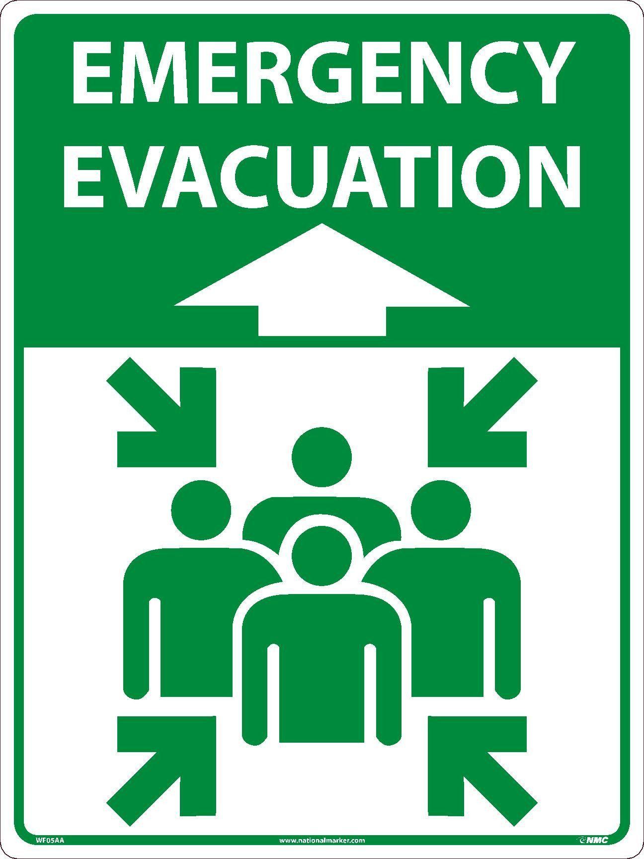 "Emergency Evacuation Asphalt Art 24""x18"" Floor/Wall"