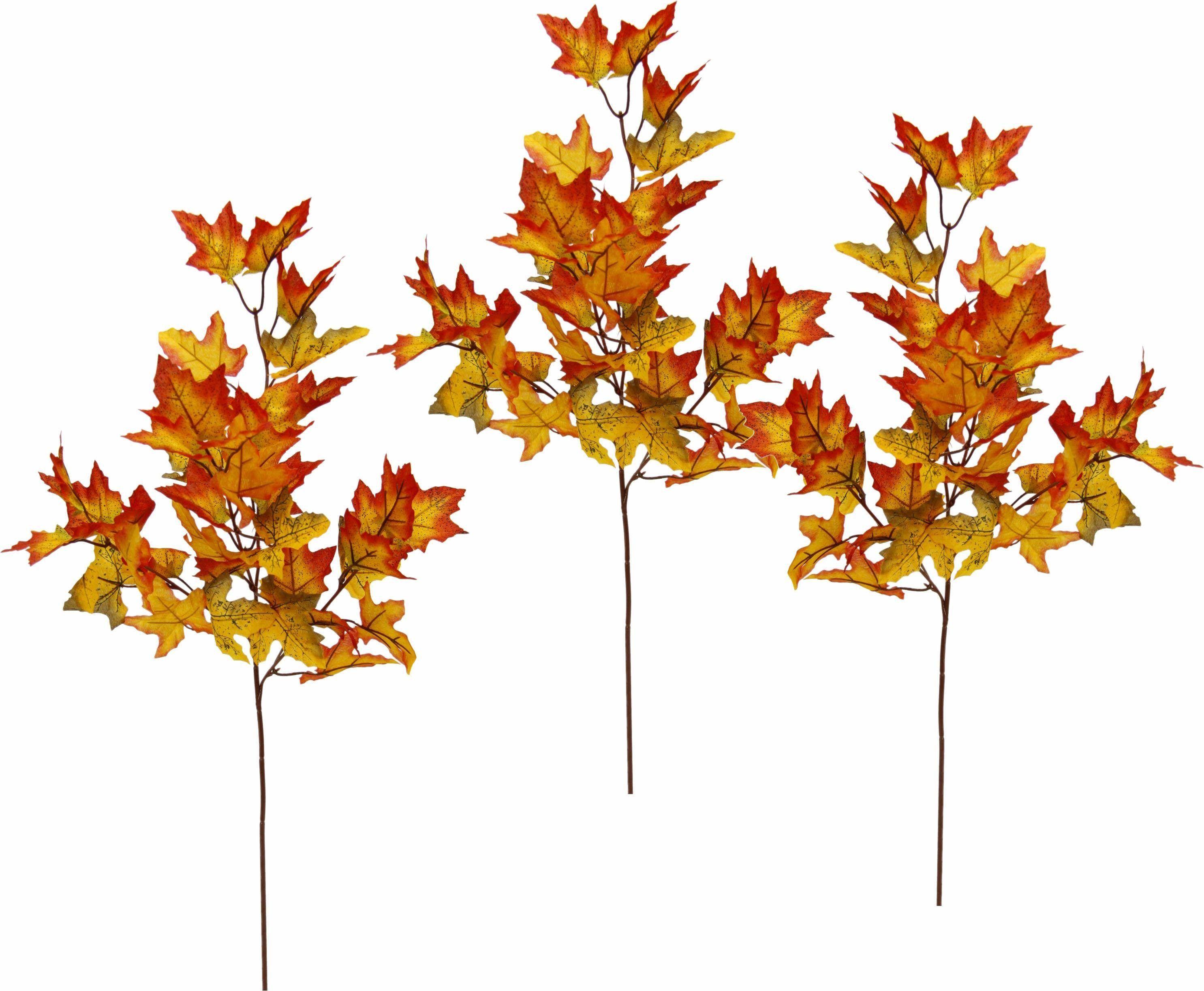 Kunstpflanze rot, »Ahornzweige 64 cm«, yourhome Jetzt bestellen unter: https://moebel.ladendirekt.de/dekoration/dekopflanzen/kunstpflanzen/?uid=d074b132-0ad0-541e-a65f-320bf37a1d68&utm_source=pinterest&utm_medium=pin&utm_campaign=boards #dekopflanzen #kunstpflanzen #kunstpflanze #dekoration