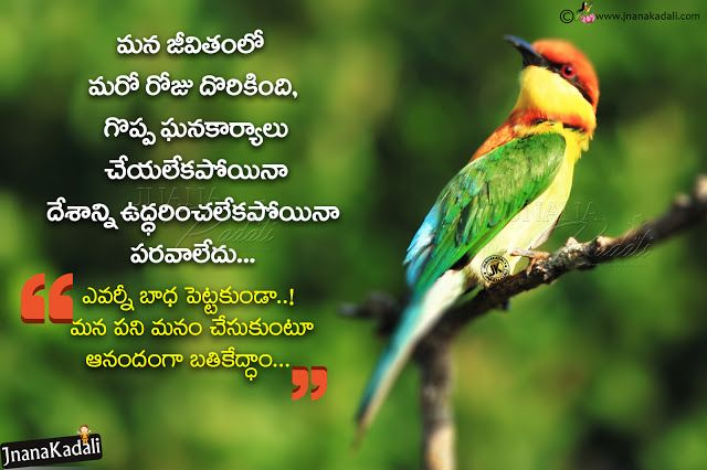 telugu life quotes being happy ever quotes hd in