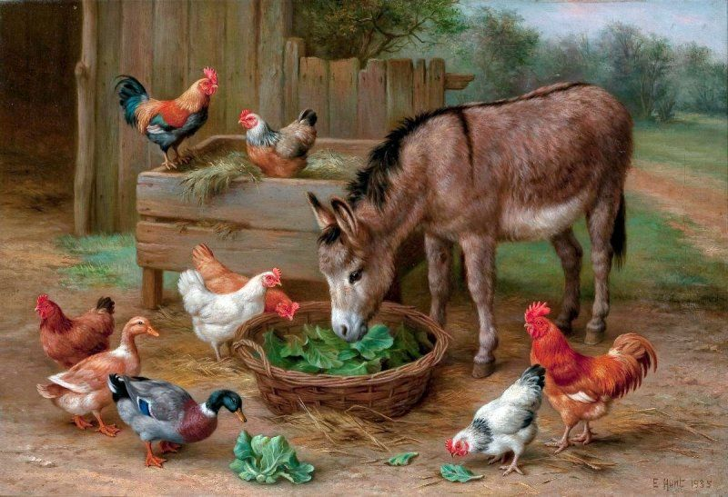 картинка скотный двор домашние животные выбрать унитаз, рейтинг
