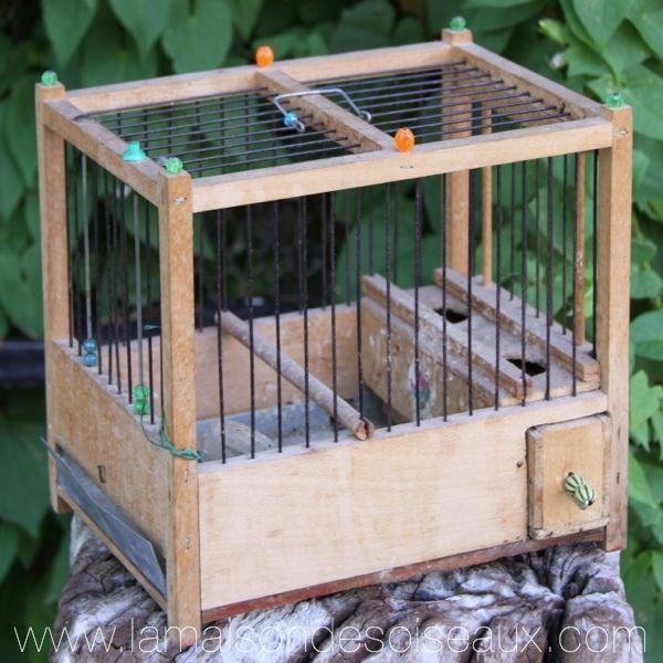cage grive ancienne la maison des oiseaux cages anciennes pinterest les oiseaux. Black Bedroom Furniture Sets. Home Design Ideas