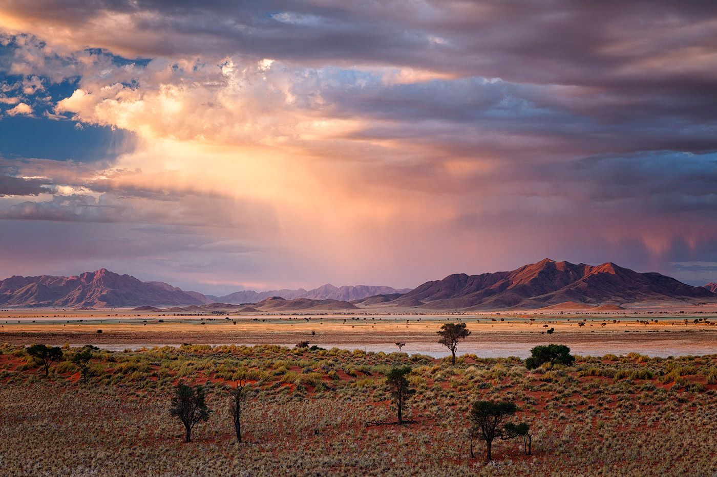 landscape photo of sunset on the grass plains of the namib rand