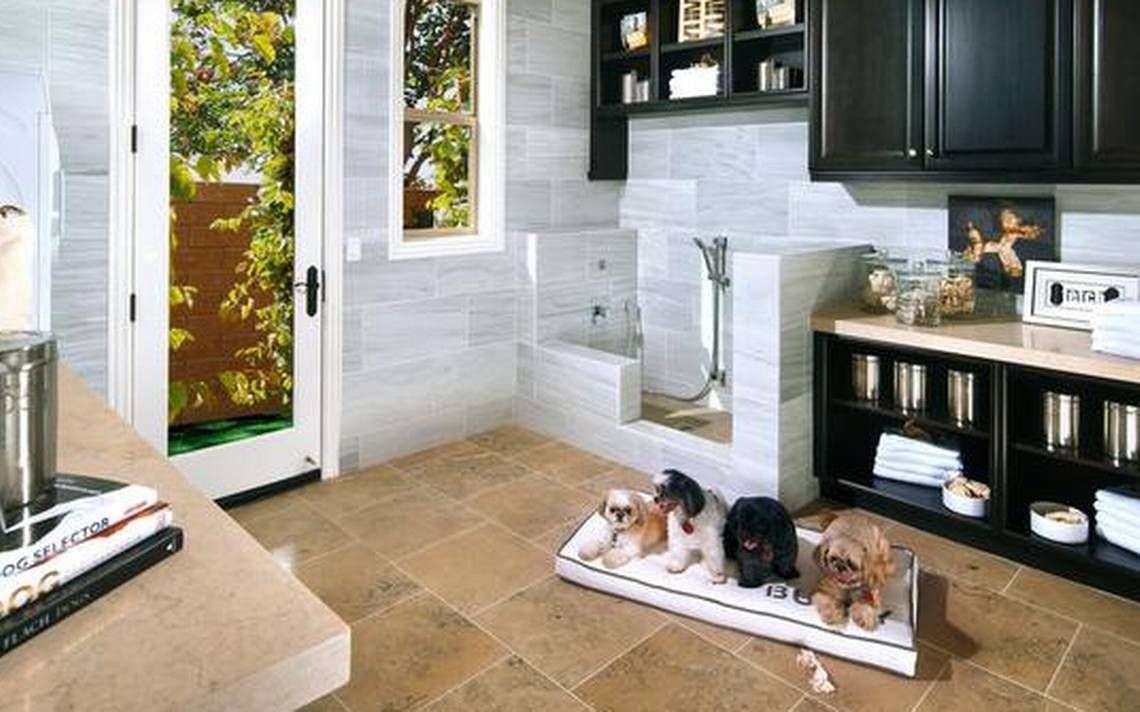 Pet amenities are a draw for homebuyers Dog washing