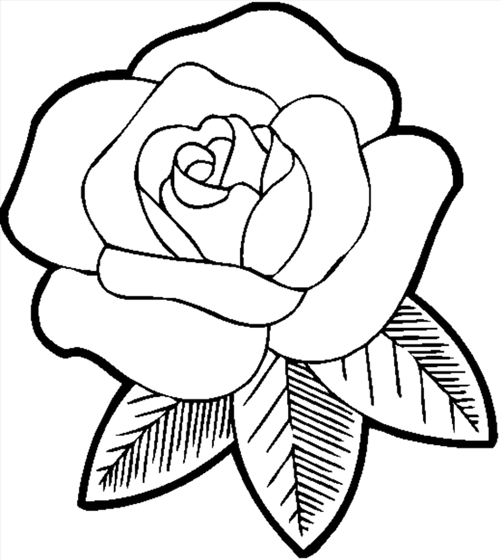 507e18e355fee2fdaec68ce448029889 » Rose Coloring Pages Easy