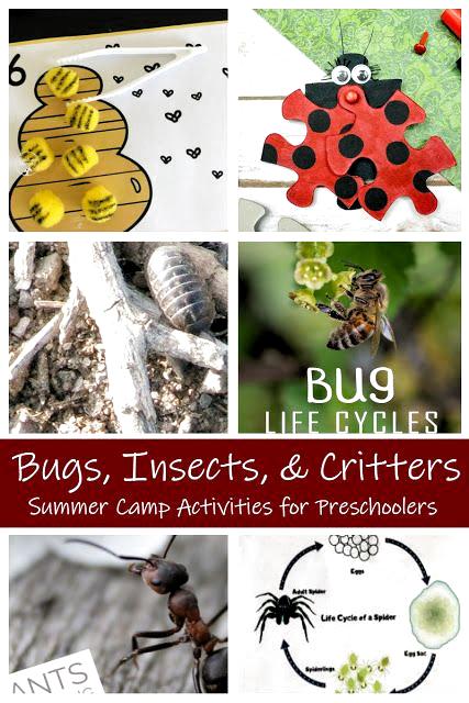 Wer liebt Käfer und Würmer und Insekten und Spinnen? !! Die erste Woche unseres DIY Summer Camp Aktivitäten-Serie dreht sich alles um Makroinvertebrat... #aktivitaten #insects