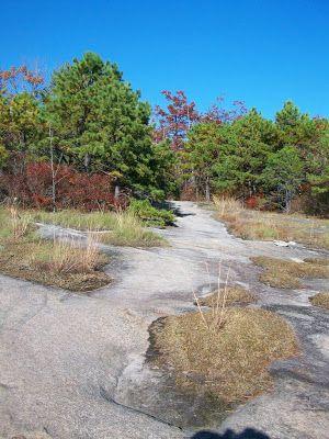 Slickrock Trail on Big Rock dupont dam park