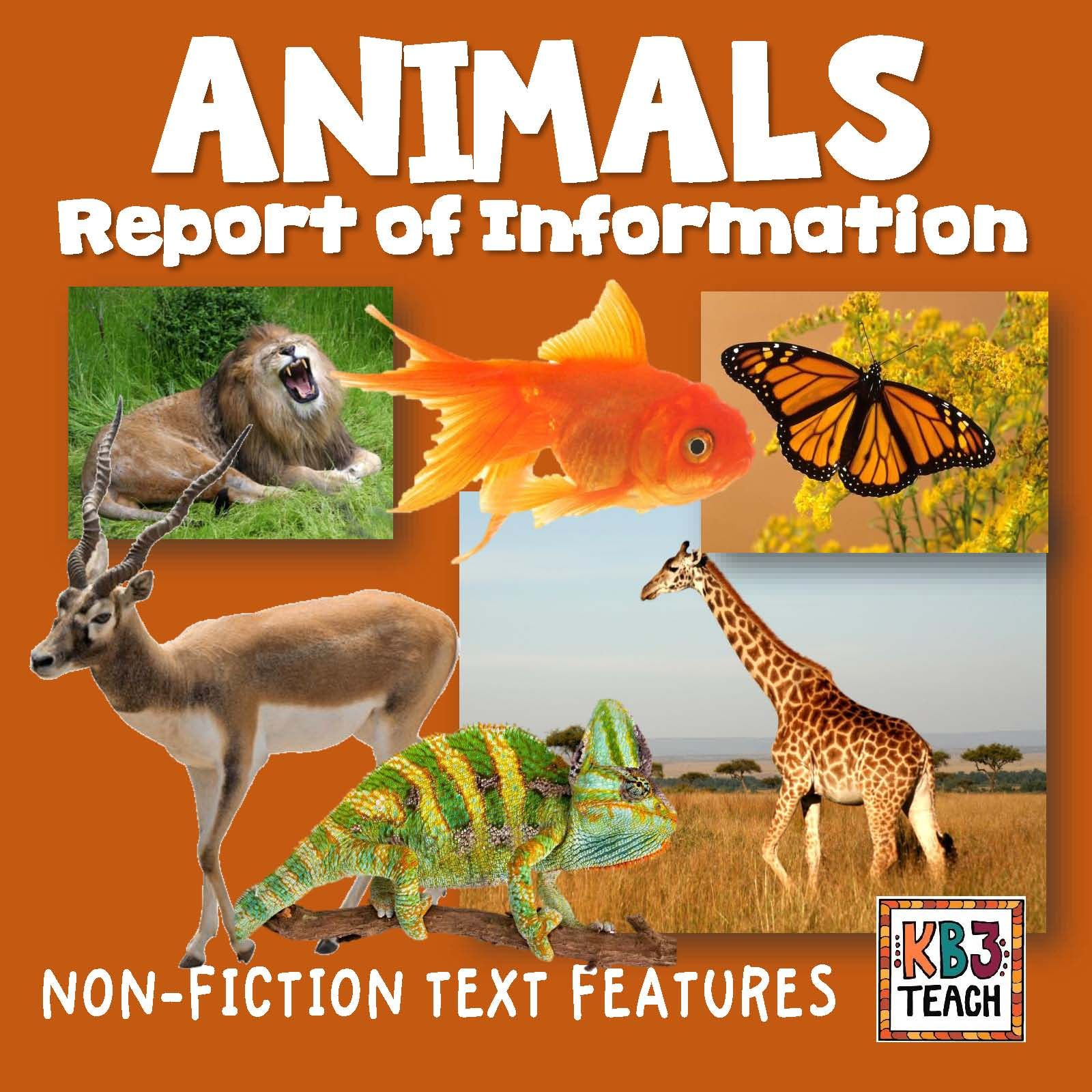 non fiction useful and informative Keep it real has 219 ratings and 39 reviews  while the book contained many useful and informative essays on the craft of creative nonfiction writing, the format .