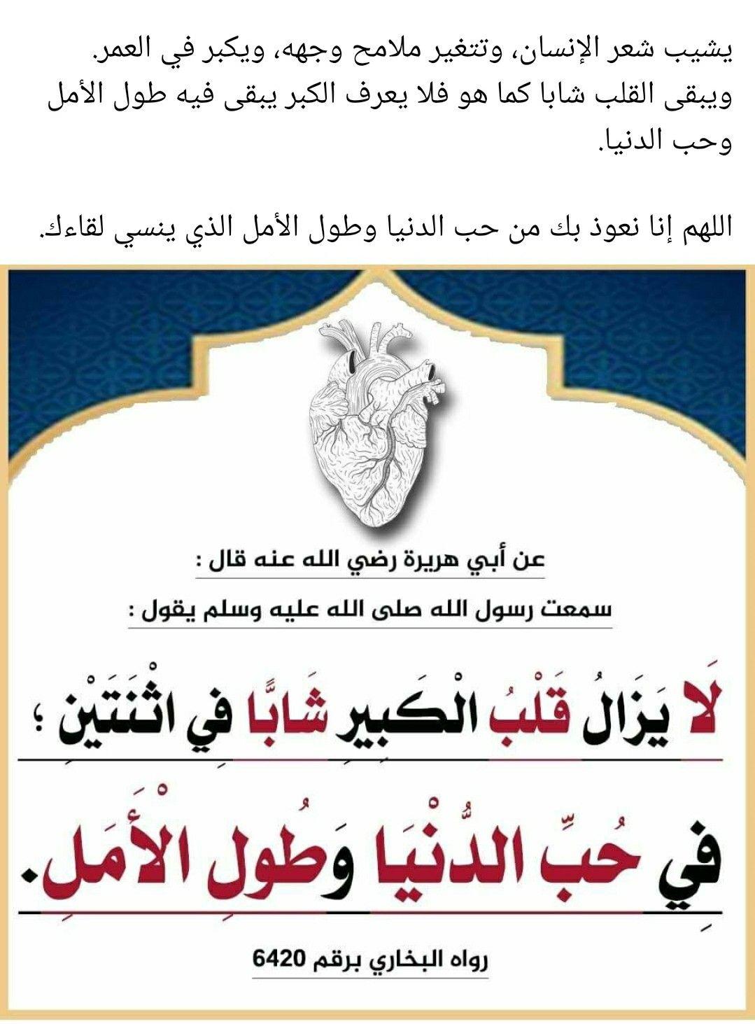 Pin By The Noble Quran On I Love Allah Quran Islam The Prophet Miracles Hadith Heaven Prophets Faith Prayer Dua حكم وعبر احاديث الله اسلام قرآن دعاء Hadith Islam Stories