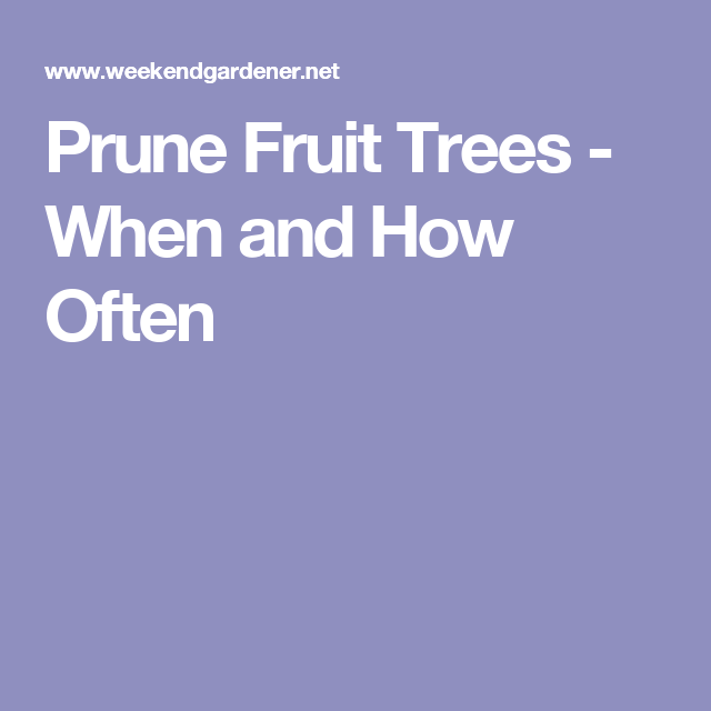 Prune Fruit Trees - When and How Often