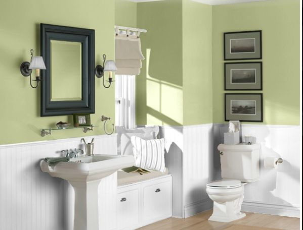 Sherwin Williams Paint Shagreen Bathroom Ideas Bathroom Colors