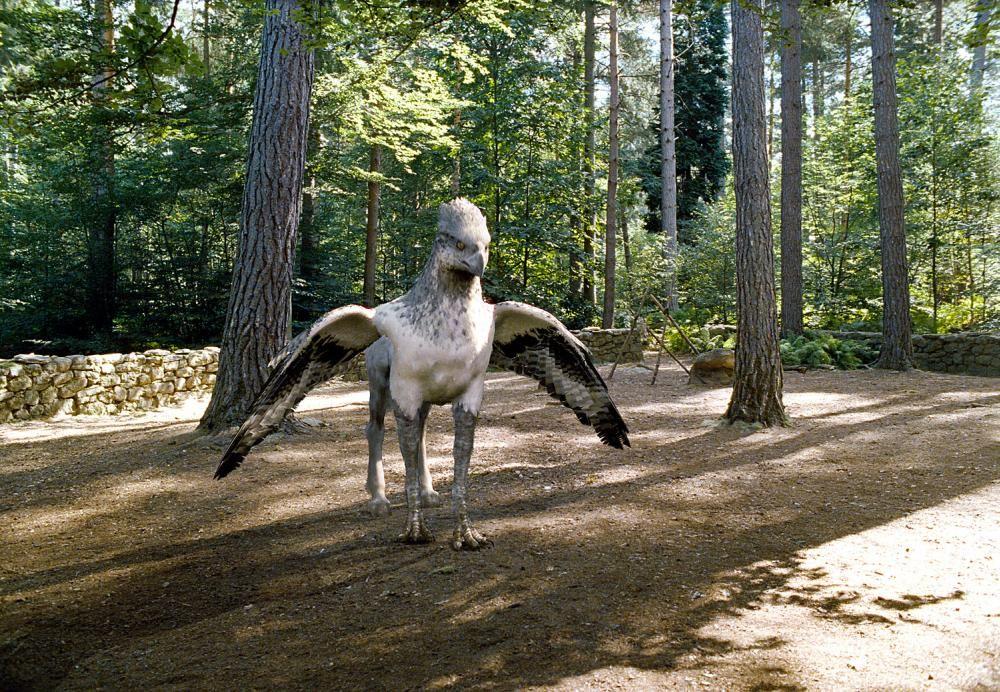 HARRY POTTER AND THE PRISONER OF AZKABAN Buckbeak The Hippogriff