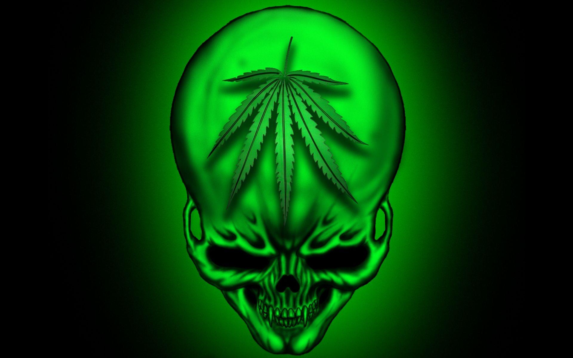 Image result for marihuana