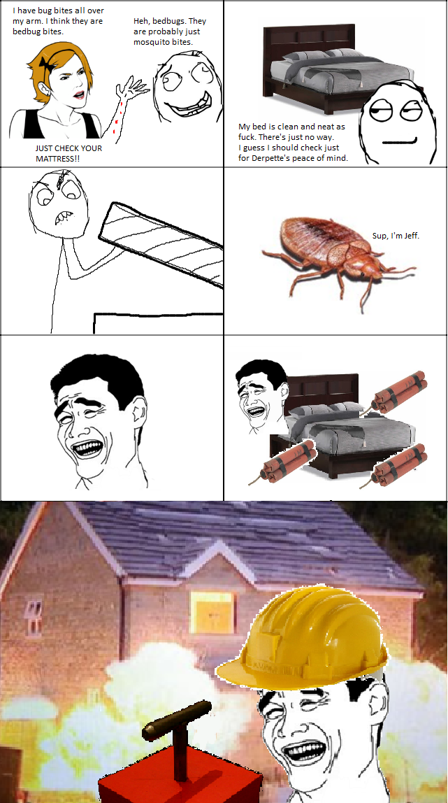 Bed Bugs Bed bugs