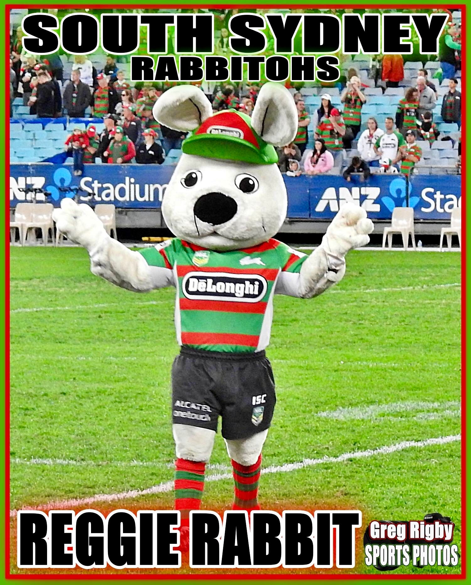Pin By Jared Schnabl On Rabbitohs Rabbits In Australia Sports Photos Sports Logo