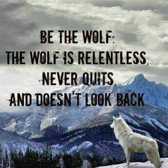 Take the advice encourage wolf quotes lone wolf - Animal pak motivational quotes ...