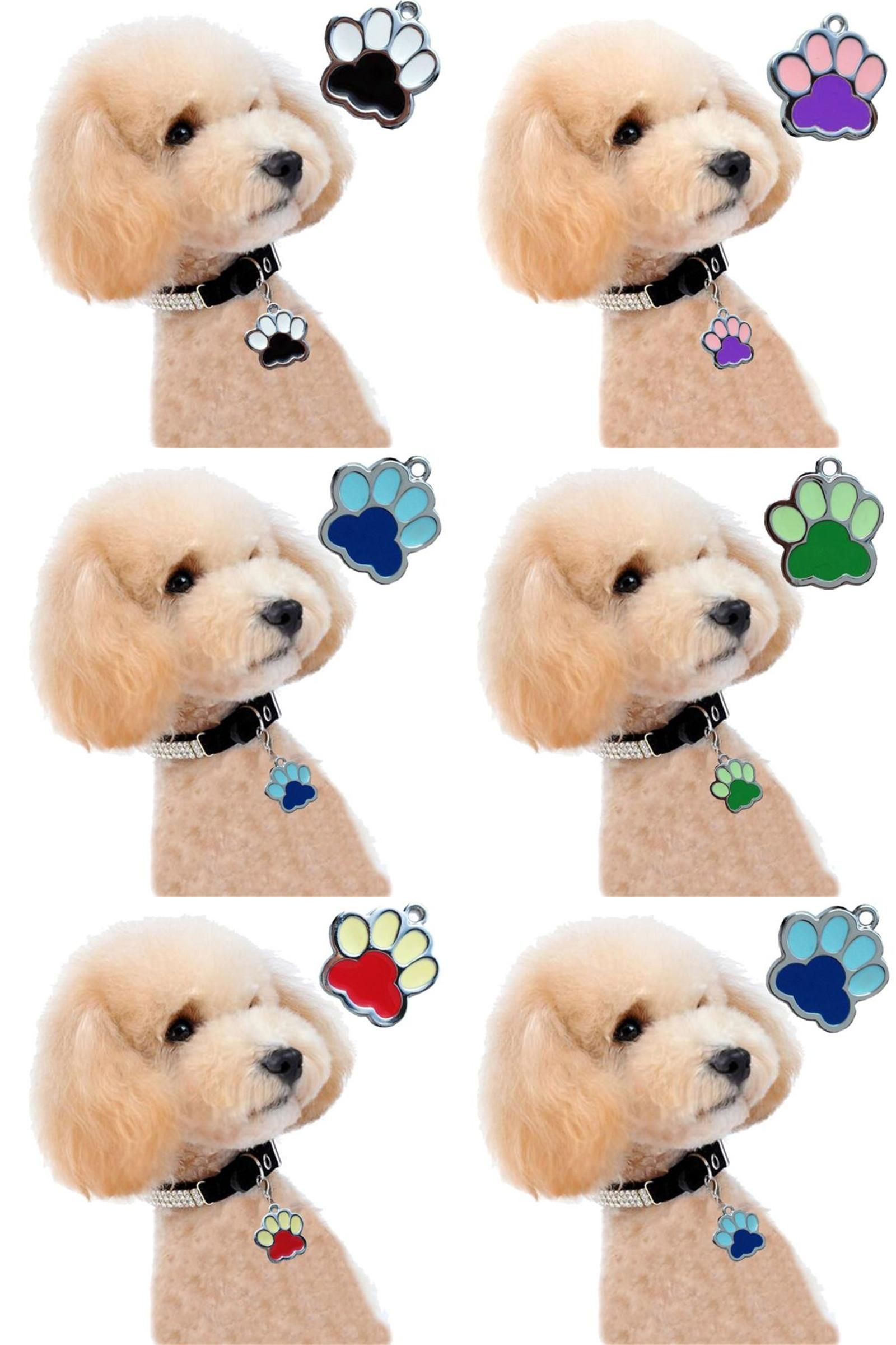 Visit to buy pc dogs pets accessories mascotas fashion popular