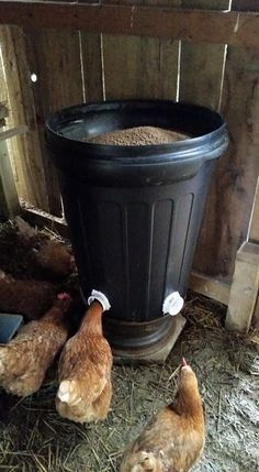 Chicken Feeder Great Idea Could Use A Small Container Like A Bucket From The Hardware Store Mangeoire Poule Elever Des Poulets Jardin Poulailler