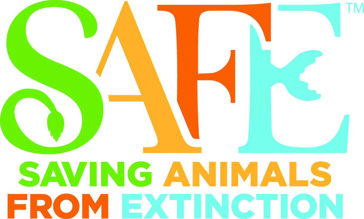 Recognizing Our Marine Wildlife On Endangered Species Day Save Animals Endangered Species Endangered Animals