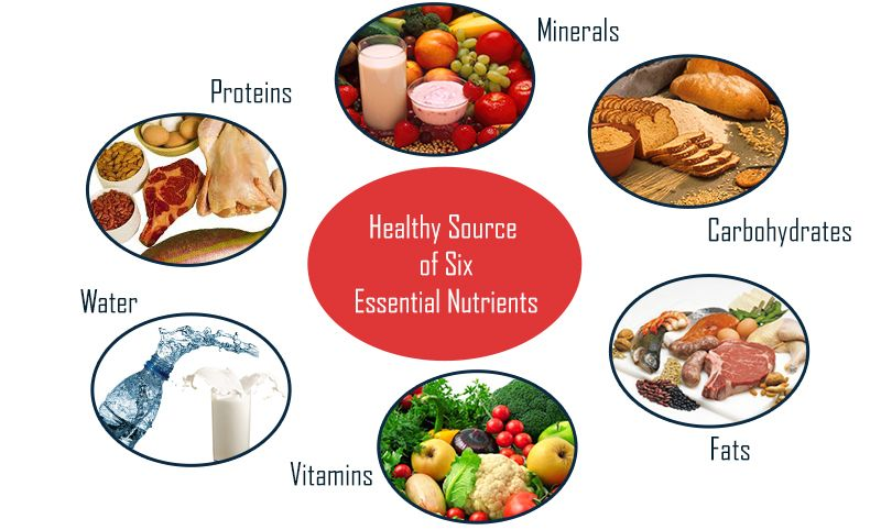 6 Essential Nutrients And Their Functions Nutrition Nutrient Healthy